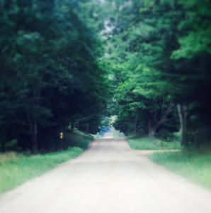 Road near our new home. Won't this be an amazing place for a musician's retreat?!